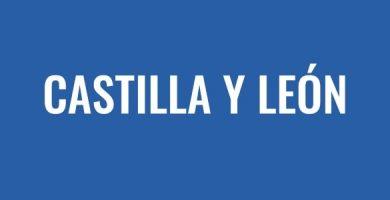 Pasar ITV en Castilla y León