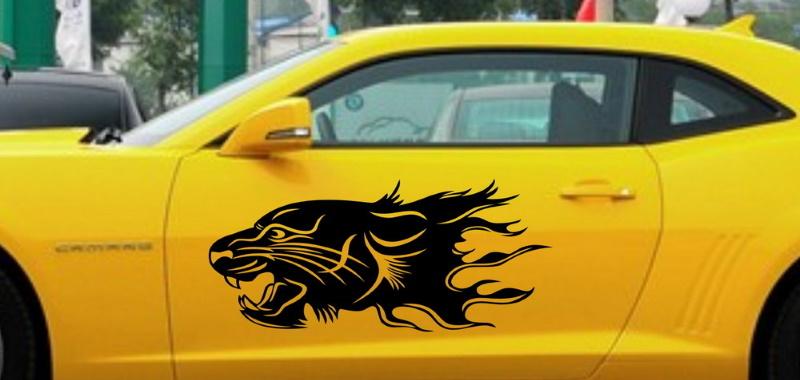 decoracion especial de un coche